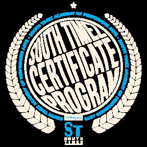 STMZ Syllabus Logo